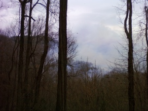 The view across the Pacolet Valley from my porch 2/2/2009